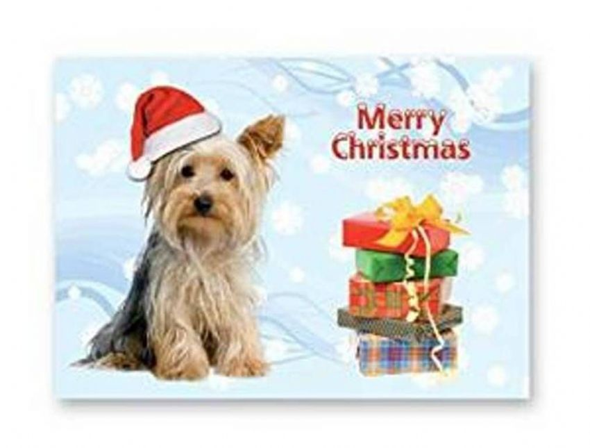 Christmas card Yorkie and many more breeds.